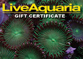 Soft Corals Gift Certificate