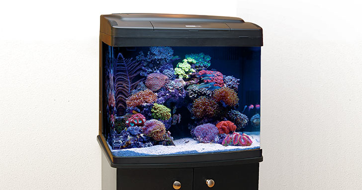 Simple Guide to Nano Reef Aquariums