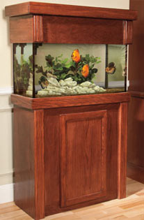Aquarium Stands Amp Canopies Showcasing Aquariums With