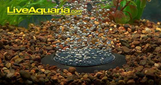 Increase aeration for healthy aquariums