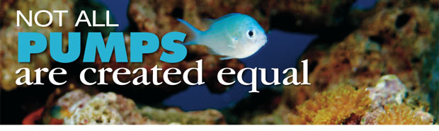 Selecting the Right Water Pump for your Aquarium