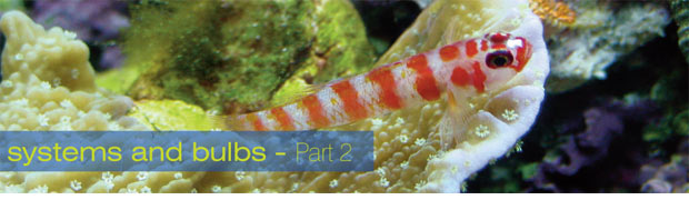 Aquarium Lighting: Systems and Bulbs - Part 2