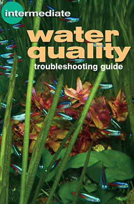 Remedy Common Aquarium Problems: Water Quality Troubleshooting Guide