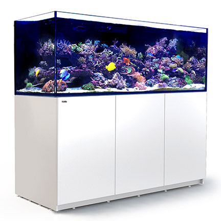 Red Sea REEFER™ XXL 750 Rimless Reef Ready System, White