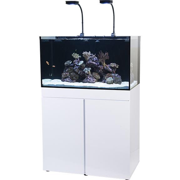 liveaquaria approved aquatic supplies jbj rimless flat panel