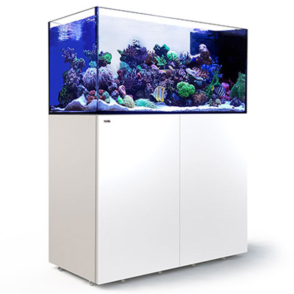 Red Sea REEFER™ Peninsula 500 Rimless Reef Ready System, White