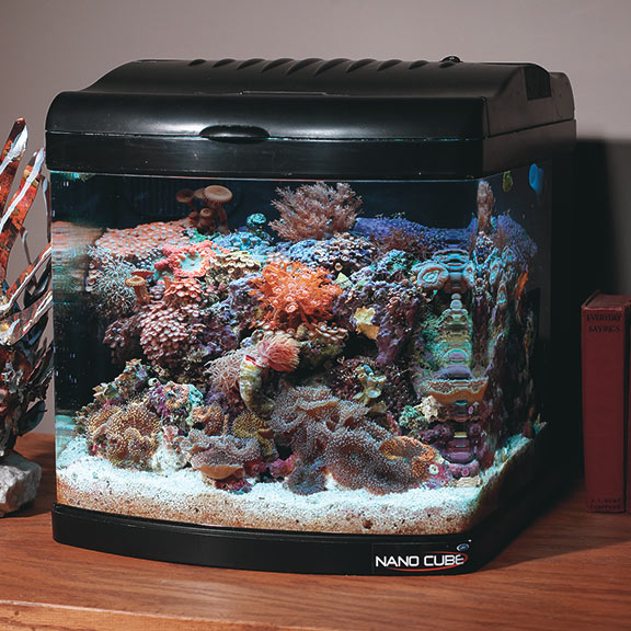 Fan-Cooled Nano Cube Aquariums