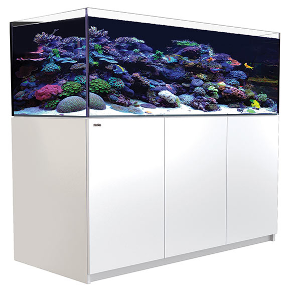 Red Sea REEFER™ XL 525 - White