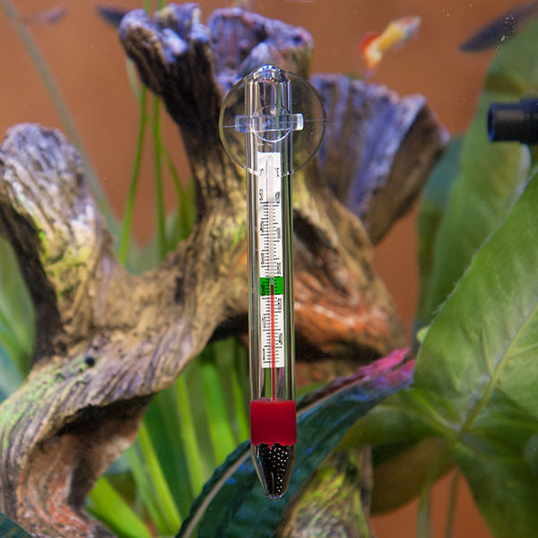 Hagen Glass Thermometer