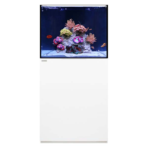WATERBOX REEF 70.2 WHITE