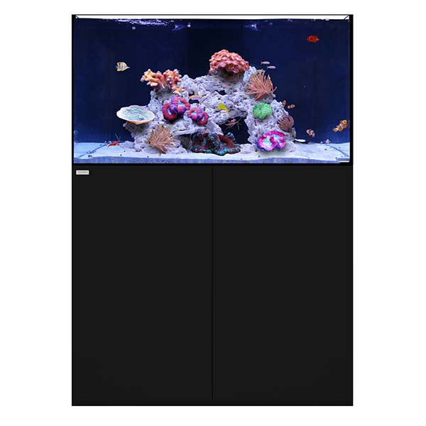 WATERBOX REEF 100.3 BLACK