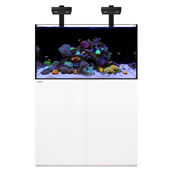 WATERBOX REEF 100.3 +PLUS HD EDITION WHITE