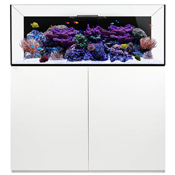 WATERBOX REEF 130.4 WHITE