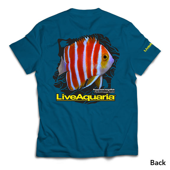 LiveAquaria T-Shirt - Peppermint Angel