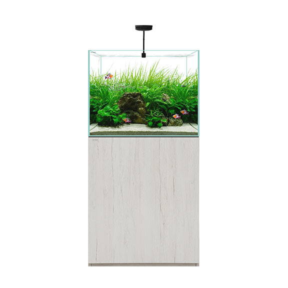 WATERBOX CLEAR 2418 - Beige +Edition