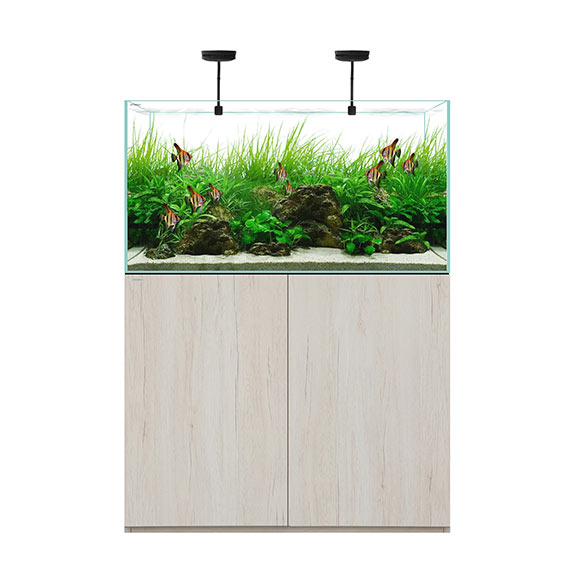 WATERBOX CLEAR 3618 Beige +Edition