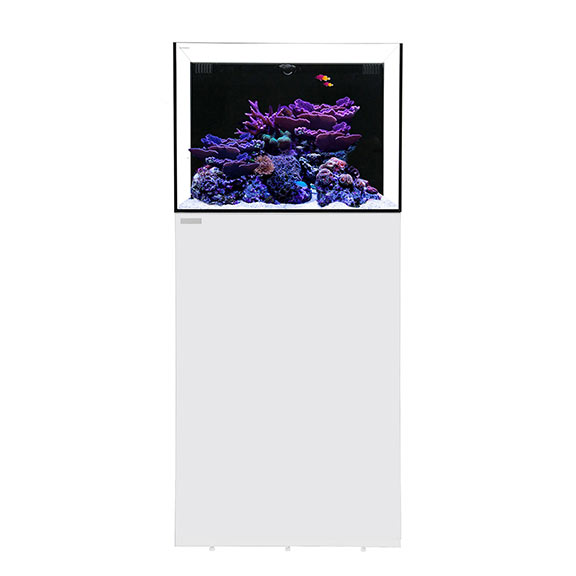 Waterbox ALL-IN-ONE 30.2 Aquarium System with Stand - White