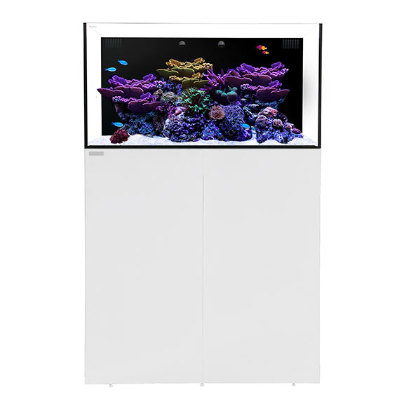 Waterbox ALL-IN-ONE 50.3 Aquarium System with Stand - White