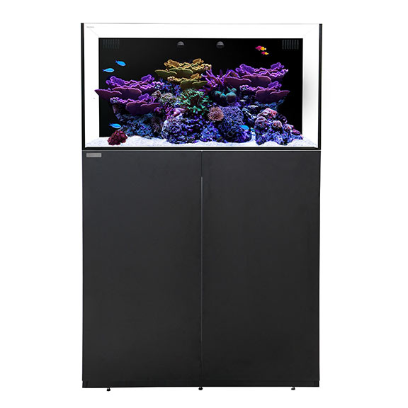 Waterbox ALL-IN-ONE 50.3 Aquarium System with Stand - Black