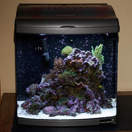 liveaquaria approved aquatic supplies 24 gallon nano cube deluxe aquarium w free nano cube stand. Black Bedroom Furniture Sets. Home Design Ideas