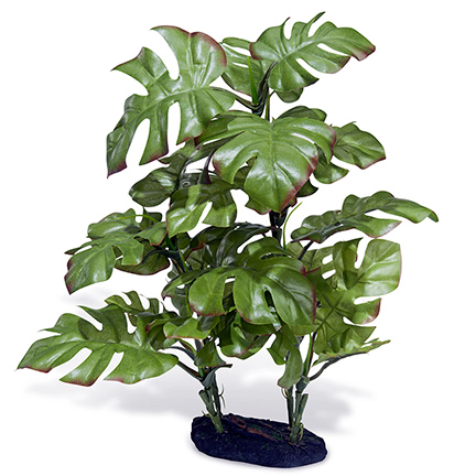 Azoo Real Plant Artificial Monstera deliciosa