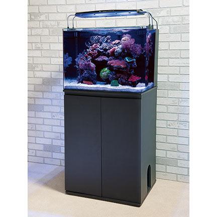 Liveaquaria Approved Aquatic Supplies Jbj Rimless