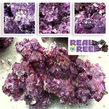 """Real Reef"" Eco Friendly Natural Rock"