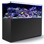 Red Sea REEFER™ XXL 750 Rimless Reef Ready System, Black