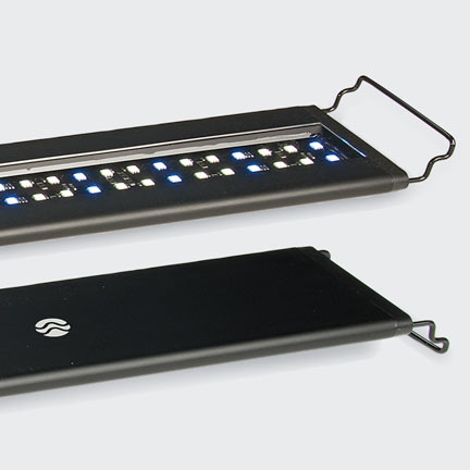 Current USA Satellite Freshwater LED+ Fixture