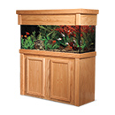 "R&J Enterprises Aquarium Groove Series 48"" x 13"" x 30"" High Cabinet & Canopy"