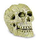 Tetra GloFish® Skull Ornament