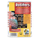 V2O Rotifers Blister Cubes