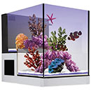 Innovative Marine NUVO Concept  Drop-Off Peninsula Aquarium