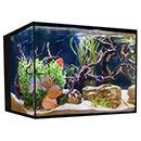 Cobalt Aquatics 45 Gallon C-Vue Aquarium Kit