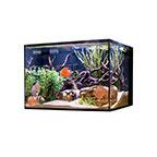 Cobalt Aquatics 45G C-Vue Aquarium