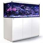 Red Sea REEFER™ XXL 625 Rimless Reef Ready System, White