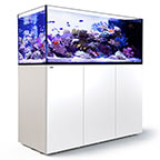 Red Sea REEFER™ Peninsula 650 Rimless Reef Ready System, White