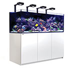 Red Sea REEFER™ DELUXE XXL 750 Rimless Reef Ready System, White