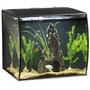 Fluval Flex Complete Aquarium Kit   15 Gallon, Black, Freshwater (Green Décor)