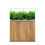 WATERBOX CLEAR 3618 - Oak