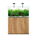 WATERBOX CLEAR 3618 Oak +Edition