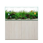 WATERBOX CLEAR 4820 Beige