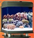 Nano Cube 28-gallon CF-QUAD w/Stand