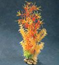 Yup! Planted Whimsy Orange Bacopa Plant