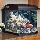 28 Gallon Nano Cube LED Intermediate Series Aquarium