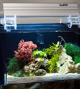 AquaFuge External Hang-On Refugium