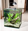 Eheim 9G Aquastyle Aquarium - 2 Pack Filter Replacement Pads