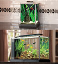 Fluval Spec Desktop Aquarium Kits