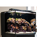 Innovative Marine NUVO Fusion Aquariums