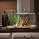 JBJ Flat Panel Peninsula Rimless Desktop Aquarium